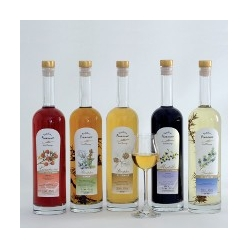 Liquore di grappa al mirtillo - Francesco Poli