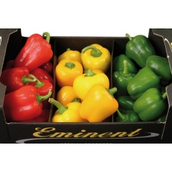 Small Pepper in 3 colors mix 1 kg