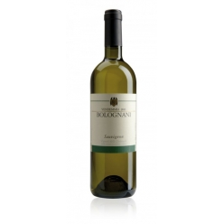 Sauvignon white wine -...