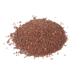 Black grain mustard seeds...
