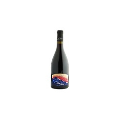 Pinot nero red wine - Pelz