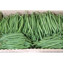 Haricots verts 2 kg