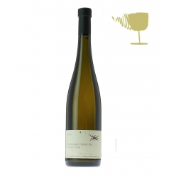 Riesling Biologico Grand Cru Muenchberg - Julien Meyer