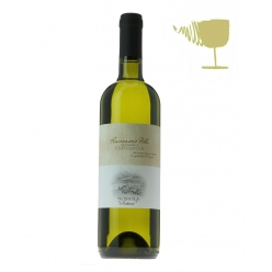 Sottotovi white wine grape...