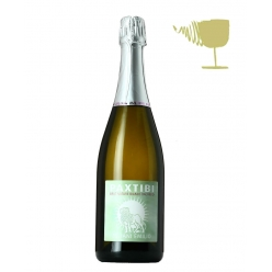 Groppello Brut Nature Paxtibi - Zuliani