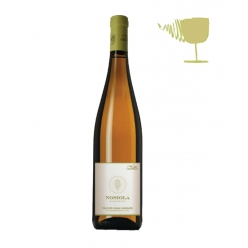 Nosiola traditional white wine - Cellar Salvetta