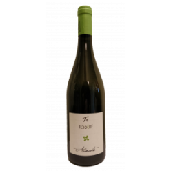 Alimante white wine Chardonnay - Cellar Tessere