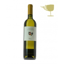 Falanghina white wine from...