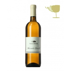 Moscato giallo white wine -...