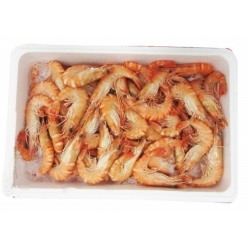 Whole Tropical Shrims 2 kg