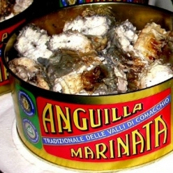 Anguilla in vinegar 200 gr....