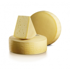Asiago cheese kg 1.5