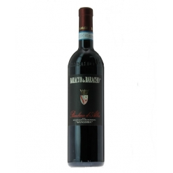 Barbera red wine Monserra -...
